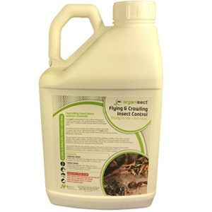 Organic insect killer in 5L ready to spray